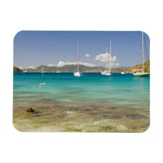 Snorkelers in idyllic Pirates Bight cove, Bight, Vinyl Magnet