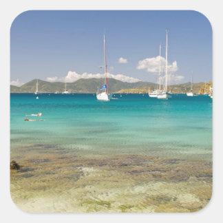Snorkelers in idyllic Pirates Bight cove, Bight, Square Sticker