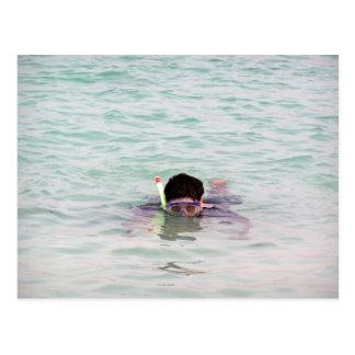 Snorkeling in the Lakshadweep Islands Post Cards