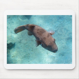 snorkeling in the red sea mouse pad