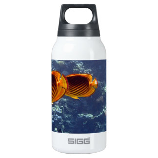 snorkeling in the red sea thermos bottle