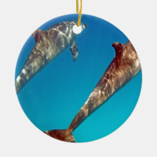 snorkeling with dolphin ceramic ornament