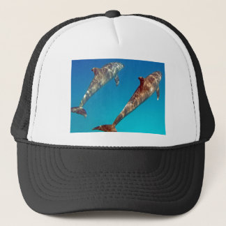 snorkeling with dolphin trucker hat