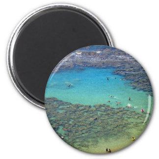 Snorklers at Hanauma Bay, Oahu, Hawaii Magnet