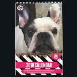 "SNORT 2018 Calendar<br><div class=""desc"">SNORT is an all-volunteer registered 501(c)3 non-profit rescue based in the Northeast. Its purpose is to rescue brachycephalic dogs (mostly French Bulldogs, Boston Terriers, Pugs, and English Bulldogs) from shelters and owners who can no longer keep them, and place them into loving homes. We believe all dogs should be given...</div>"