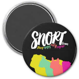 SNORT color logo magnet