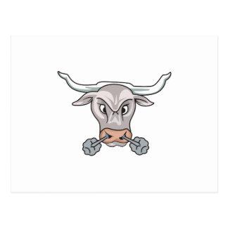Snorting Bull Postcard