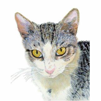 Snoshu the Cat Sculpture