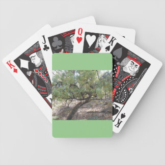 Snottygobble Screaming Hag Playing Cards