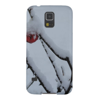 Snow and Christmas Ornaments Galaxy S5 Case