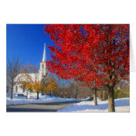 Snow and Foliage on Town Common Greeting Card