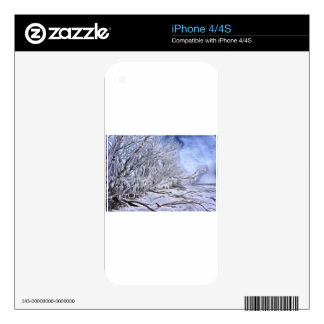 Snow and Ice photo art iPhone 4 Skins