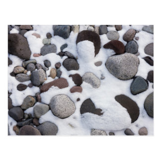 Snow And Rocks, Mt. Rainier National Park 2 Postcard