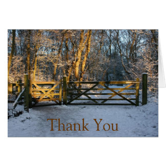 snow and sunlight thank you note card