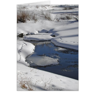 Snow and Water Greeting Card