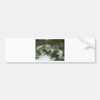 Snow At Byce Canyon Bumper Sticker