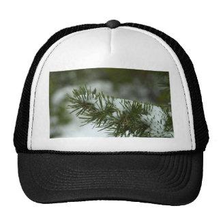 Snow At Byce Canyon Hat