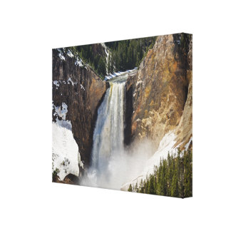 Snow at Lower Falls of the Yellowstone Canvas Print