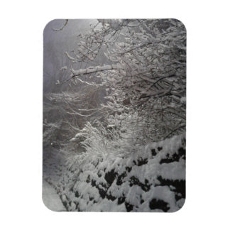 snow atone wall magnet