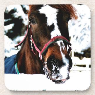Snow Beauty Coaster