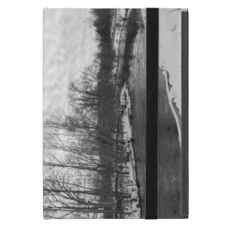 Snow Beauty James River Grayscale Covers For iPad Mini