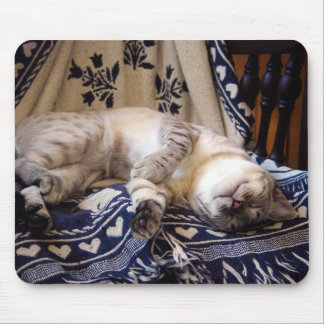 Snow Bengal on Rocker Mouse Pad