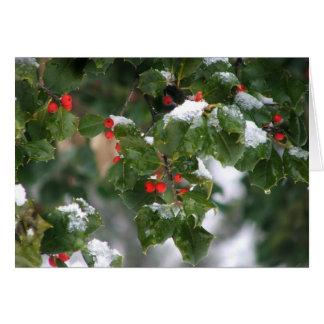 Snow Berries Card