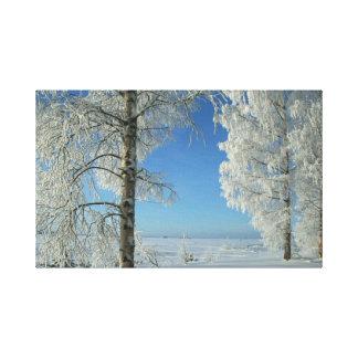 Snow Birches Canvas Print