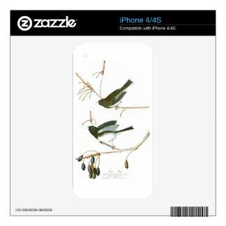 Snow Bird John James Audubon Birds of America iPhone 4 Decal