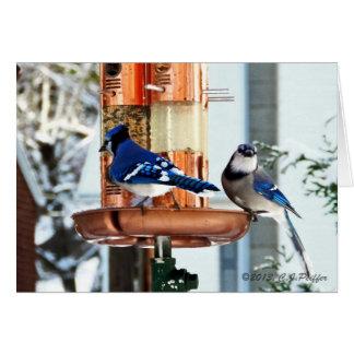 """Snow Birds 2"" Card"