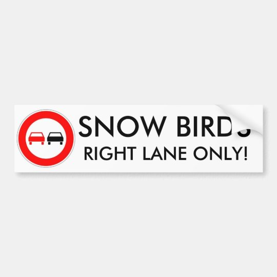 Snow Birds Bumper Sticker