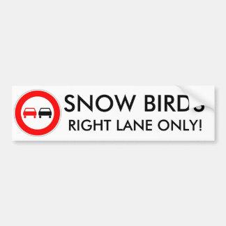 Snow Birds Car Bumper Sticker