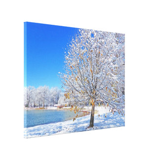 """""""SNOW-BLANKETED PARK AGAINST BRIGHT BLUE SKY"""" CANVAS PRINT"""
