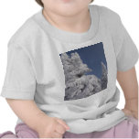 Snow Blanketed Pine Trees T-shirts