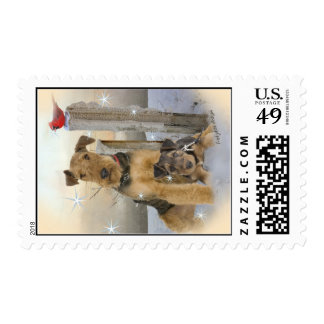 Snow Bound Airedale Puppies Postage