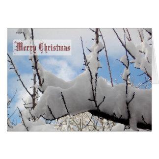 Snow Branch Christmas Card