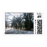 Snow Branches Postage Stamp