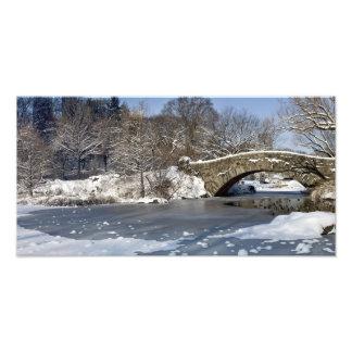 Snow Bridge and Ice Central Park Art Photo