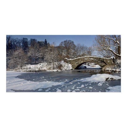 Snow Bridge and Ice Central Park Poster