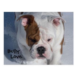 Snow Bully 2 - English Bulldog Postcard