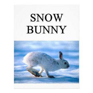 "SNOW BUNNY skiing joke 8.5"" X 11"" Flyer"