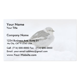 Snow Bunting Business Card