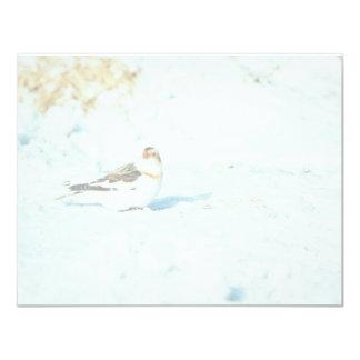 Snow Bunting Card
