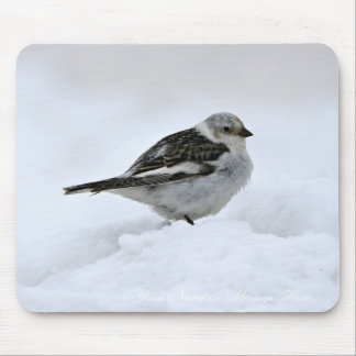 Snow Bunting Mouse Pad