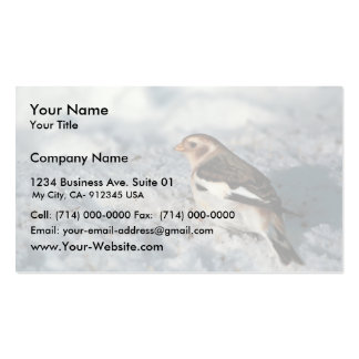 Snow Bunting, non breeding plumage Business Card Template