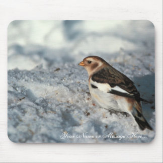 Snow Bunting, non breeding plumage Mouse Pad
