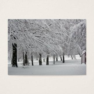 snow business card