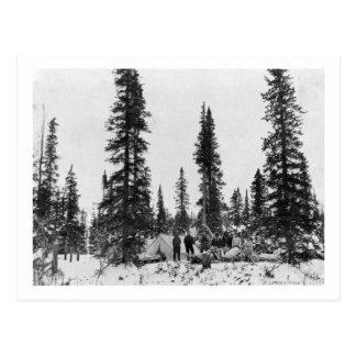 Snow Camping North of the Arctic Circle Postcard
