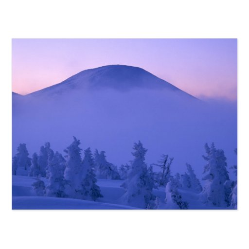Snow Capped Mountains Postcards