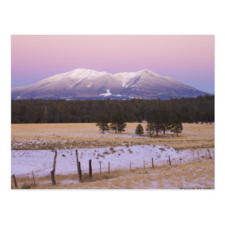 Snow Capped San Francisco Peaks at Sunset Postcards